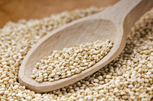 Grão de Quinoa